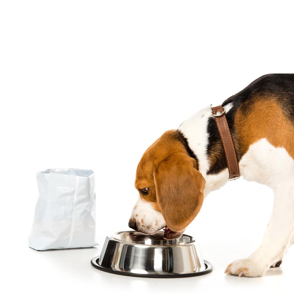 packaging-pet-food2